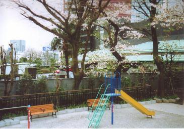 2007-03-01.jpg