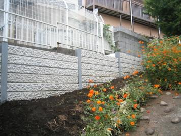 2007-09-01.JPG
