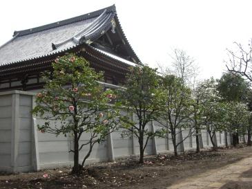 2008-03-01.JPG