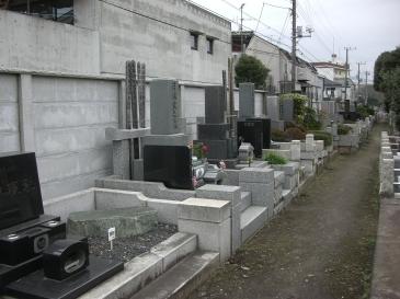 2009-02-03.JPG