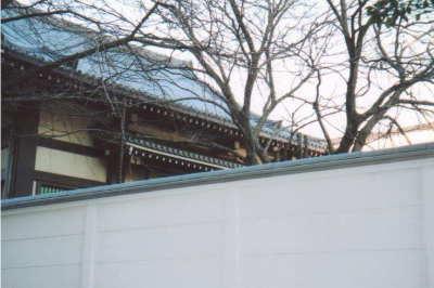2003-02-03.jpg