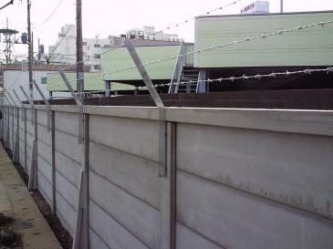 2010-02-03.JPG