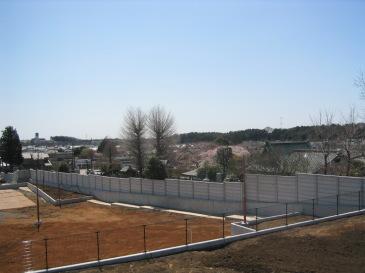 2010-03-01.JPG