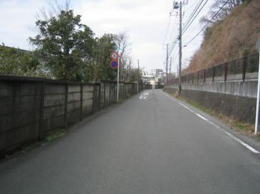 2010-04-04.JPG