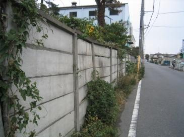 2010-06-03.JPG