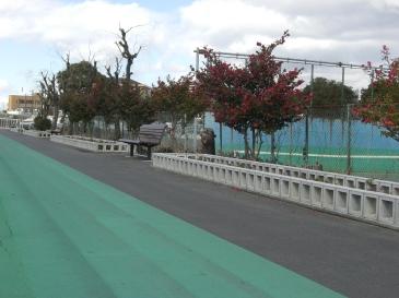 2011-02-01.JPG