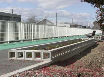 2011-02-03.JPG