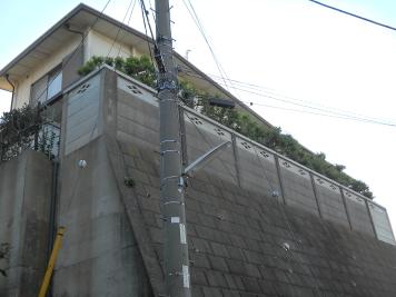 2011-12-01.JPG